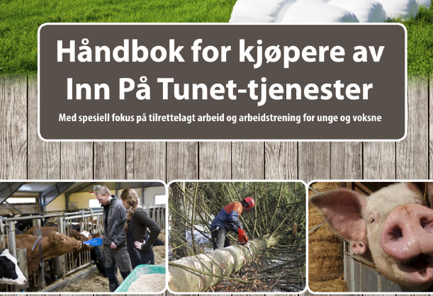 Håndbok for kjøp av IPT tjenester HIHM-2013